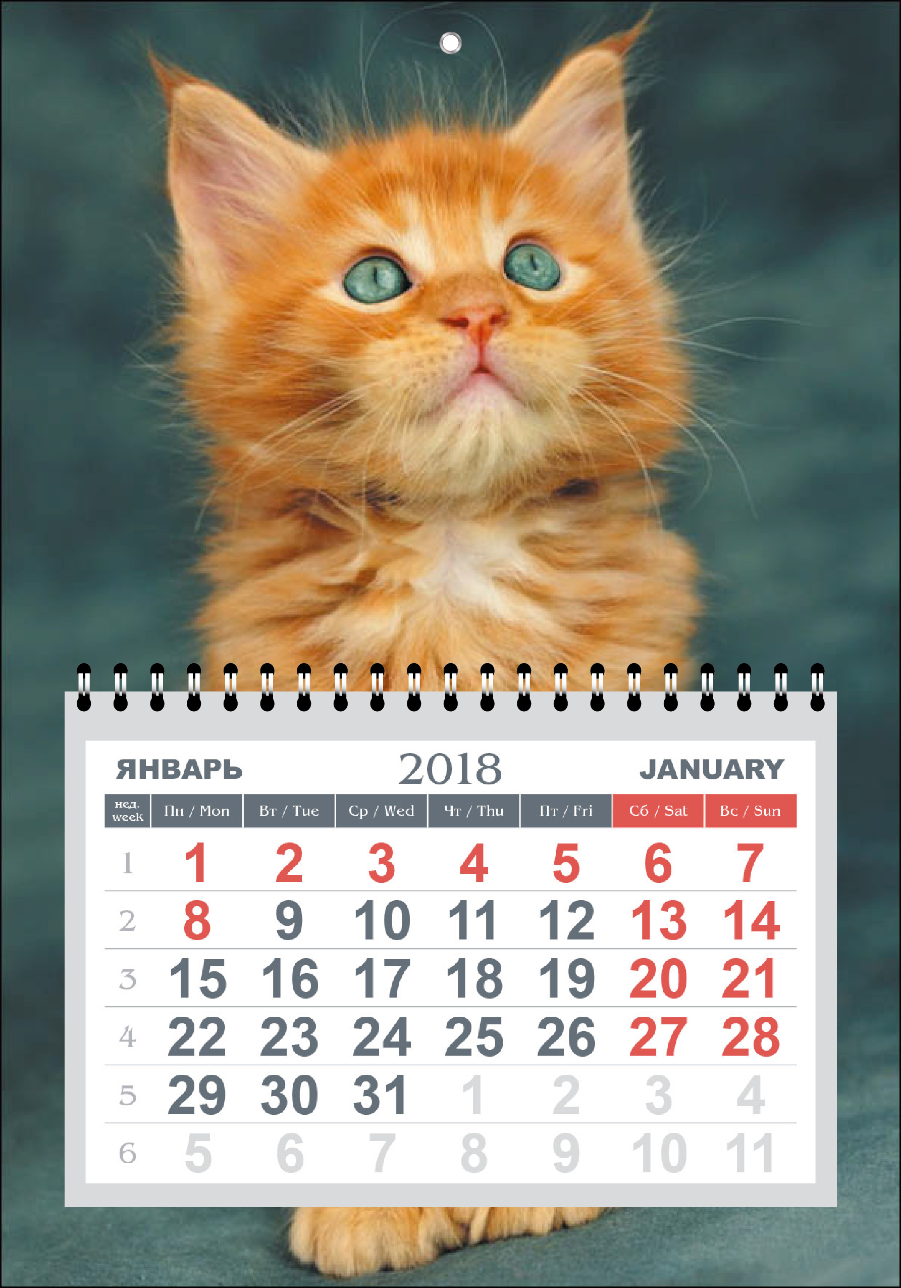 КОМПАКТНЫЙ НАСТЕННЫЙ КАЛЕНДАРЬ  на 2018 год «Котёнок»