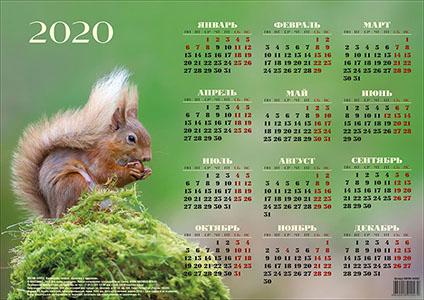 КАЛЕНДАРЬ-ПЛАКАТ на 2020 год  «Белочка с орешком»